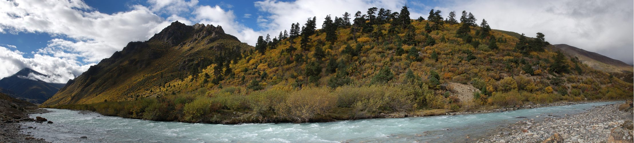 China, Tibet, Pasho > Rawu, 3950m, autumn colours