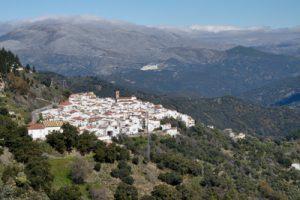 Algatocin village, 715m